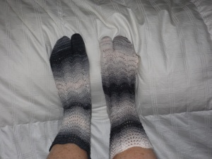 heron toe socks 012