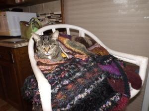 cat sweater yarns new 002
